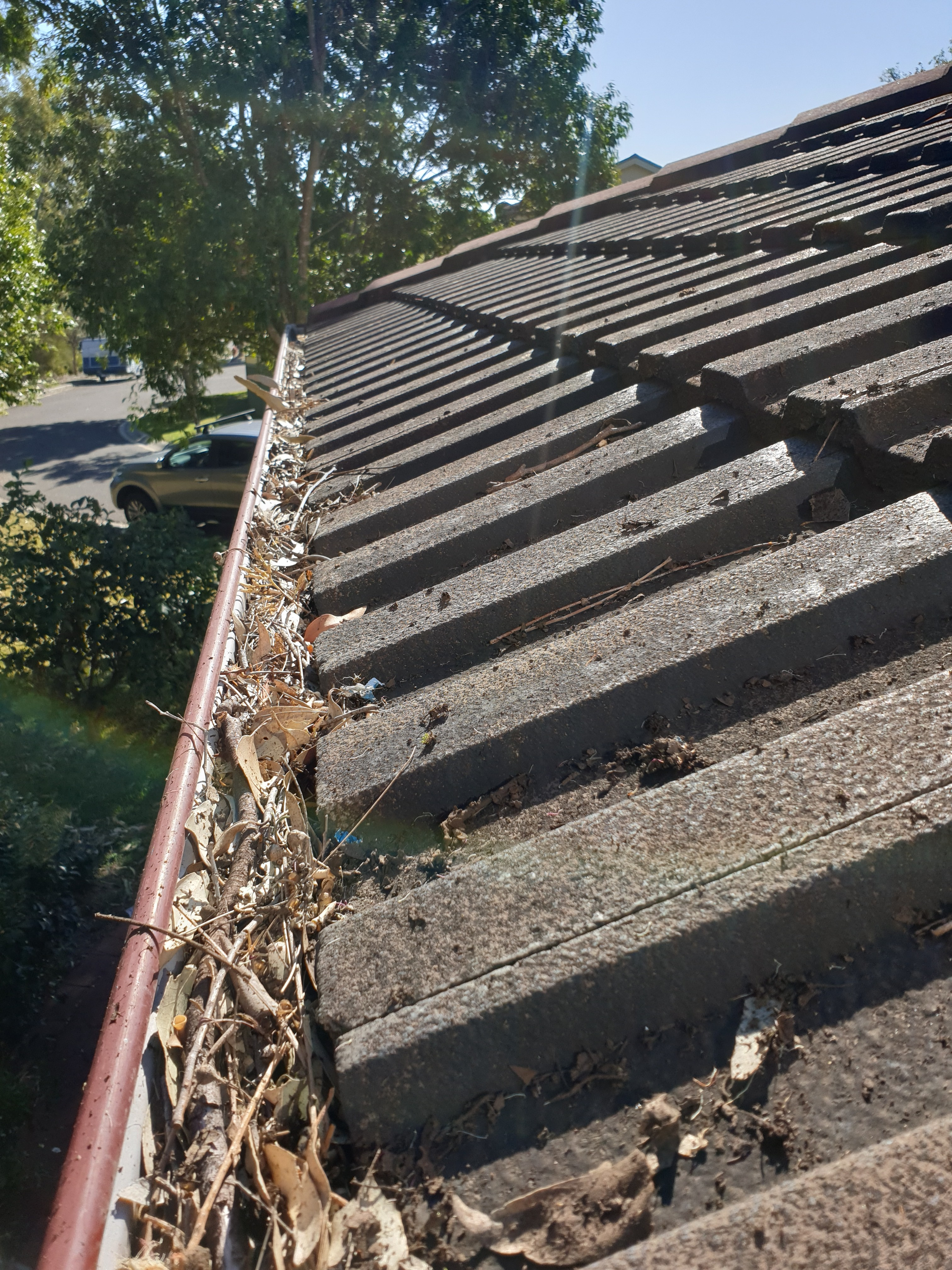 gutter cleaning sutherland shire sydney